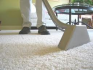 Carpet Cleaning Insurance, Flagstaff